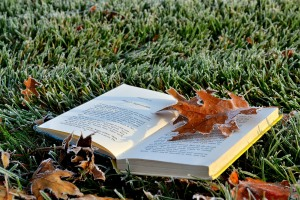 Frosted Leaves and books 10-19-2014 060