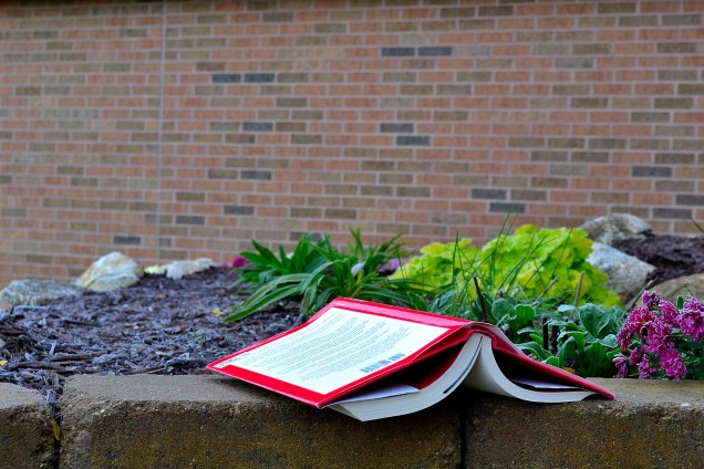 Frosted Leaves and books 10-19-2014 063