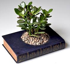 Repurposed books planter toptenz.net