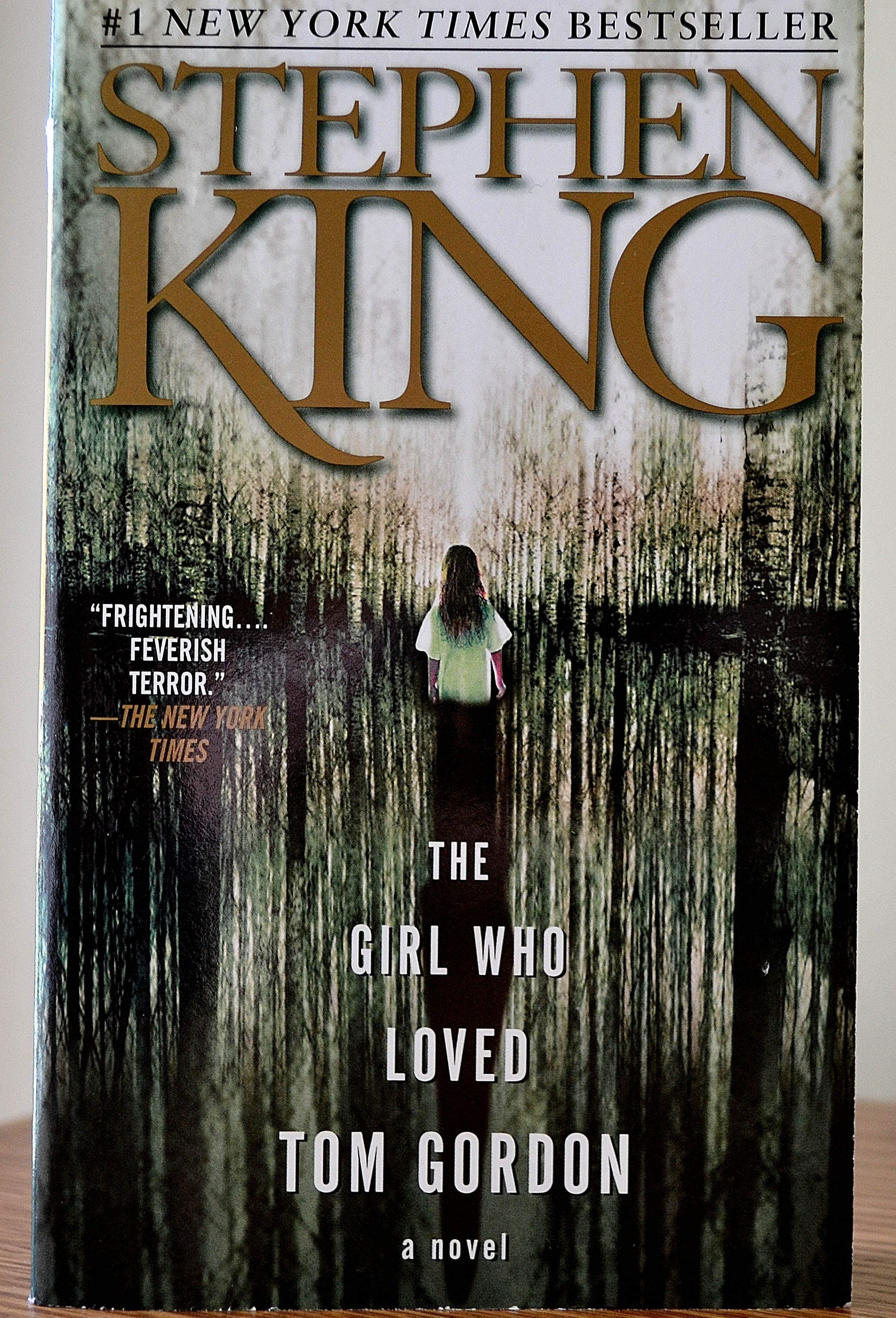 The Girl Who Loved Tom Gordon Book Summary and Study Guide