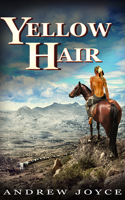 andrew-joyce-yellow-hair-cover